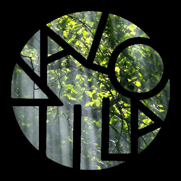 Logo_lehdistä_kokeilu